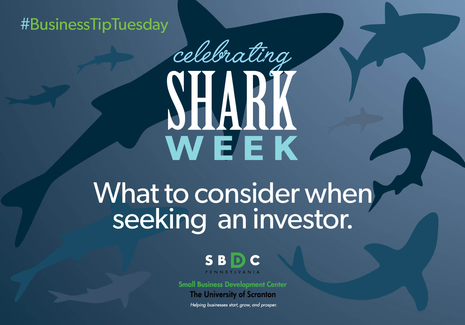 #BusinessTipTuesday – Shark Week and Investors