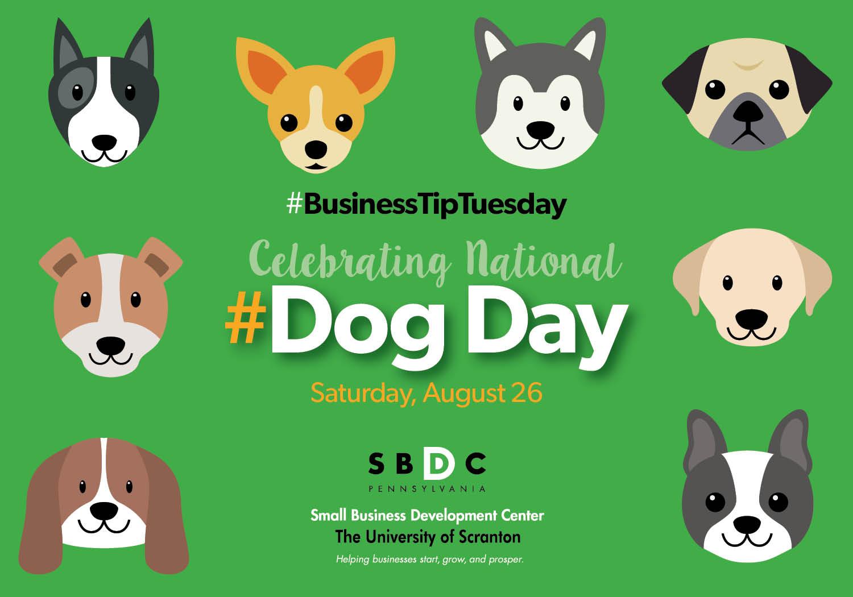 #BusinessTipTuesday- #DogDay
