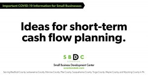 SMALL BUSINESS IDEAS FOR SHORT-TERM CASH-FLOW PLANNING: